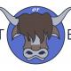 Estate Planning Basics: Fact or Bull?